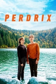 Film Perdrix streaming VF gratuit complet