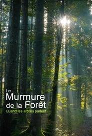 Unsere Wälder – Die Sprache der Bäume