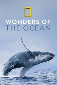 Wonders of the Ocean 2019