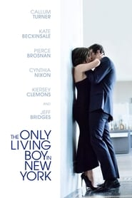 Nonton The Only Living Boy in New York (2017) Subtitle Indonesia