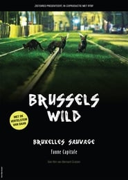 Brussels, the Wild Side