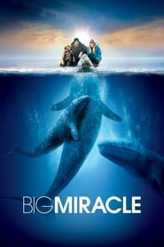 Big Miracle (2012), film online subtitrat