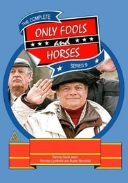 Only Fools and Horses Season 9 Episode 1
