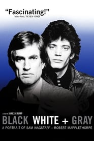 Black White + Gray: A Portrait of Sam Wagstaff and Robert Mapplethorpe 2007