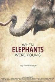 When Elephants Were Young (2016