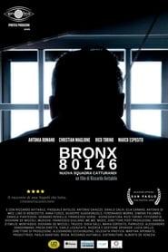 Bronx80146 – nuova squadra catturandi