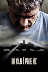 Akte Kajinek (2010)