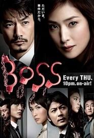Poster BOSS 2011