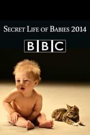 Secret Life of Babies (2014)