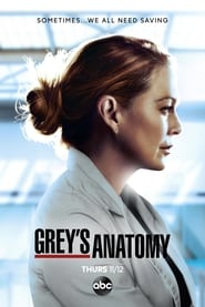 Grey's Anatomy - Season 7 Episode 13 : Don't Deceive Me (Please Don't Go)