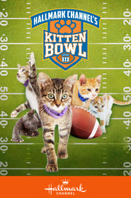 Kitten Bowl III streaming
