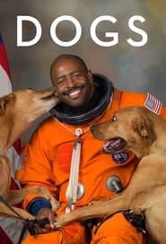 Apenas Cães: Temporada 2