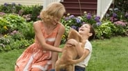 A Dog's Purpose Images