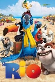 Poster Rio 2011