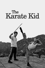 Karate Kid (2010) HD 1080p Latino