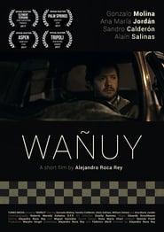 Wañuy (17                     ) Online Cały Film Lektor PL