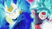 Body, Soul and Power Unleashed! Goku and Vegeta!