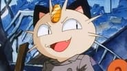 Go West, Young Meowth
