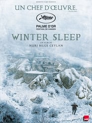 Poster Winter Sleep 2014