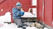 Captura de Profesor en Groenlandia