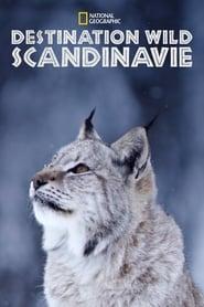 Wild Nordic 2019