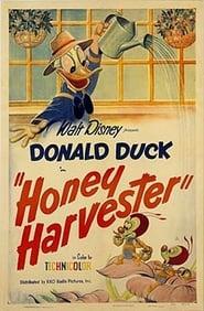 'Honey Harvester (1949)