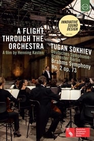 A Flight Through the Orchestra 2015