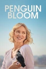 Poster Penguin Bloom 2021