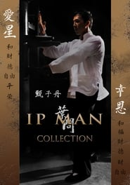 Ip Man – A Batalha Final Dublado Online