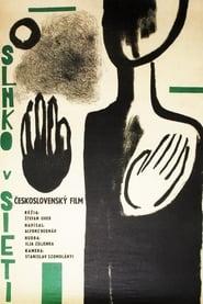 Slnko v sieti 1963