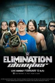 WWE Elimination Chamber 2017