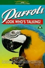 Parrots: Look Who's Talking 1995