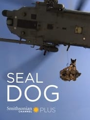SEAL Dog 2015