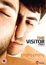The Visitor (2011)