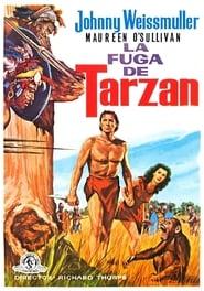 La fuga de Tarzán 1936