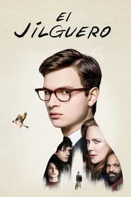 The Goldfinch (2019) | El jilguero