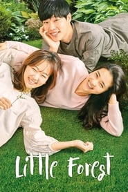 Little Forest (2018) 480p WEB-DL 400MB
