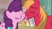 My Little Pony: Friendship Is Magic saison 7 episode 8