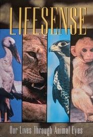 Lifesense 1991