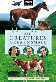Imagem All Creatures Great And Small 1ª Temporada
