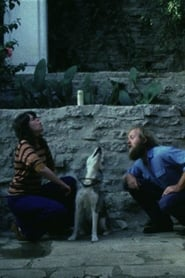 Sleeping Dogs (Never Lie) (1978)