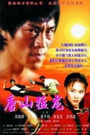 戰龍 2 2002