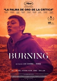 Ver Burning Online HD Castellano, Latino y V.O.S.E (2018)