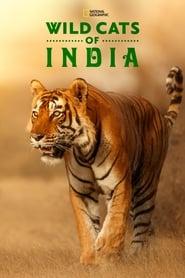 مشاهدة مسلسل Wild Cats of India مترجم أون لاين بجودة عالية
