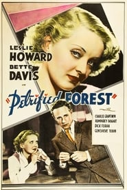 Poster for The Petrified Forest
