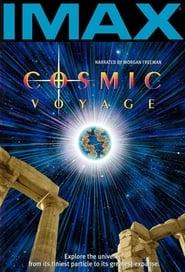 Poster Cosmic Voyage 1996