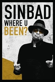 Sinbad: Where U Been? (2010)