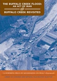 The Buffalo Creek Flood: An Act of Man (1975)