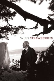 Poster Wild Strawberries 1957