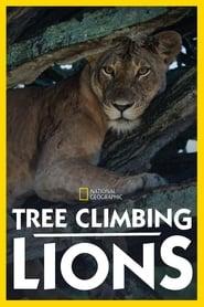 Les lions des arbres